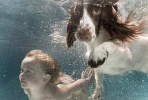 Fun in a San Juan Fiberglass Pool / Neat Pool Pictures