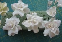 Gum Paste Flower Tutorials / by Pam Holland