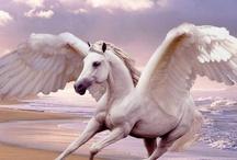 ● Pegasus