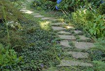 Dream Garden/outdoor Ideas / by Nan Evans