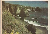 Beach & Coast