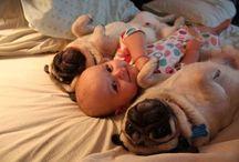 Too Cute / by Krystal Romilly