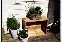 Home-Interior-Garden