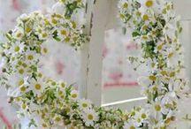 Floral Wreaths / Floral Decor