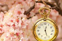 Spring Is Coming Closer! / Der Frühling rückt näher und sobald die ersten warmen Sonnenstrahlen erscheinen, kommen auch die Frühlingsgefühle auf. Grün, bunt, verspielt, verrückt..alles, was der Frühling so mitsich bringt, ist in diesem Board zu sehen. Viele, viele Pins erwünscht!
