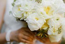 Dream Wedding / by Natalie Williams