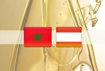 It is the fruit of cooperation between the countries of Austria and Morocco