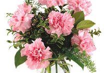 Virágok!  <3