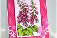 Cards-Power Poppy Stamps / by Kathie Maltby