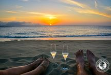 Dominican Republic / Bringing you the best in adventure and luxury travel in Dominican Republic!