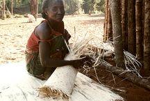 Peuple Mikea / Aujourd'hui le peuple Mikea caché dans la foret sud de Madagascar fait partie des dernières peuplades sur terre de chasseur-cueilleur.