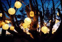 Enchanted Terrace Gardens / by Jill Huett-Ziegler