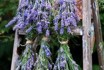 Lavender decorations