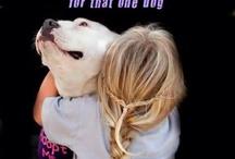 Puppy Love / by Allison Johnson