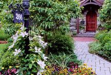 Gardening / Gardening and Landscaping Ideas / by Cathy Schrader