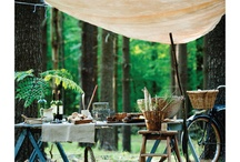 Picknick in the woods