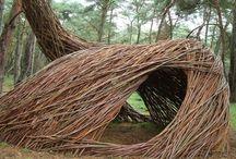 Dulini Landscaping / by Jo Clinton