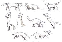 Cats Illustration Katzen