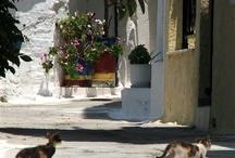Photos - Greece / Paul Left's photos