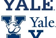 University Logos / Brand development inspiration board for a Colorado charter school.