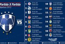 Rayados / My favorit soccer team