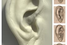 Anatomia - Orelha / Pins utilizados como referencia pra escultura da Orelha