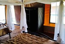 Serengeti Wild Camp / Our safe and comfortable mobile-tented camp is located in the central part of the Serengeti National Park http://www.tanzaniawildcamps.com/accommodation/serengeti-wildcamps/?adults=1&kids=0&rooms=1&date_from&date_to