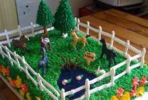 Horse cakes