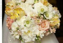 Allyson's Wedding Dreams / by Shelbi Burns