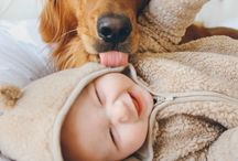 Puppies and Babies / There is a sweet relation between the Puppies and Babies.Here  confirming the relationship between those sweetest Babies and Puppies.