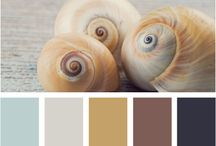 Color Palettes for New House