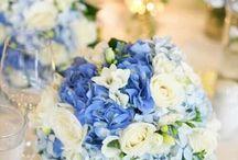 Blue theme