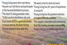 Essential Oils Young Living / by Cans Nantz