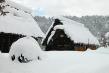 the ski house