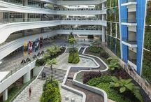 Πανεπιστήμια/universities