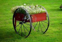 Carretillas con flores / Flores
