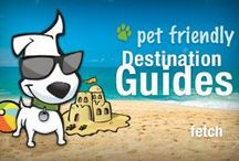 Traveling with your pets!