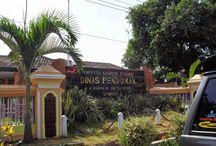 Alamat Sekolah di Kabupaten Situbondo