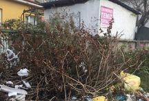 Sakarya'da Çöp Sorunu Bitmiyor !