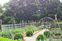 GardenDreams