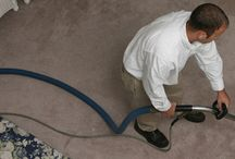 Auckland Carpet Cleaning