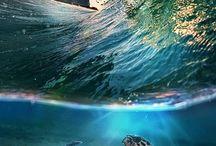 INFLUENCE: Deep Diving