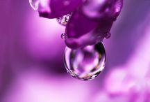 Droplets / The world of droplets.