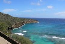 Hawaii / by Deb Ammer