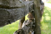 Rustic old Country / by Charlotte Winkler