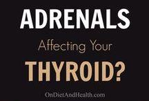 adrenals/thyroid