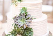Succulent Styled Shoot / Succulents, Jewellery, Styled Shoot