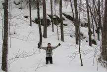 Winter Beauty