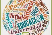 virtual educacion