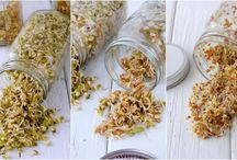 Sprouts and Sprouting / by Thrifty Foodies